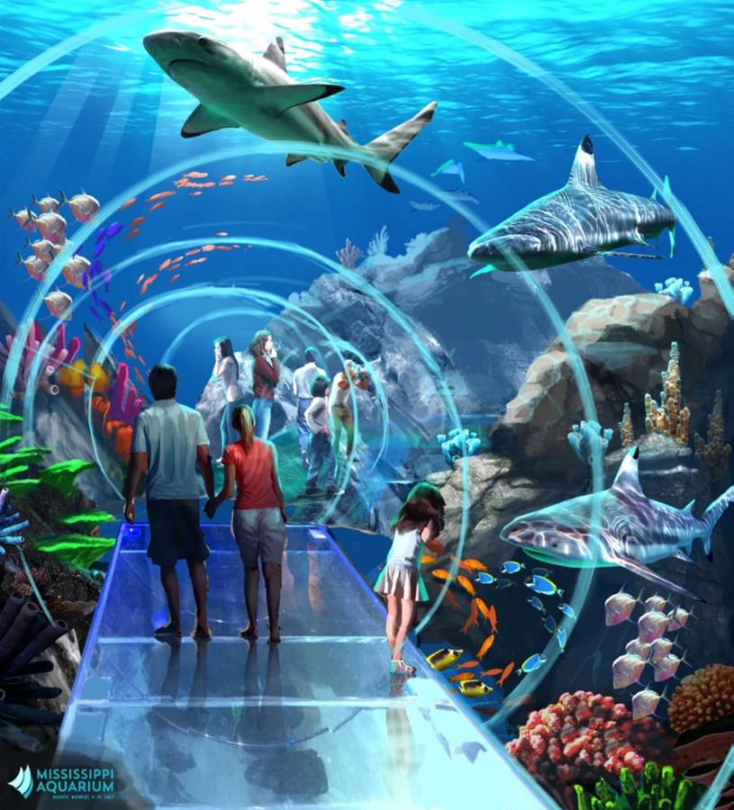 mississippi aquarium breaks ground in gulfport mississippi today